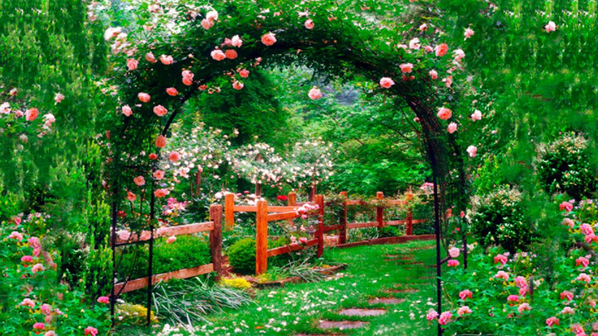 Sognando un-arco in un giardino
