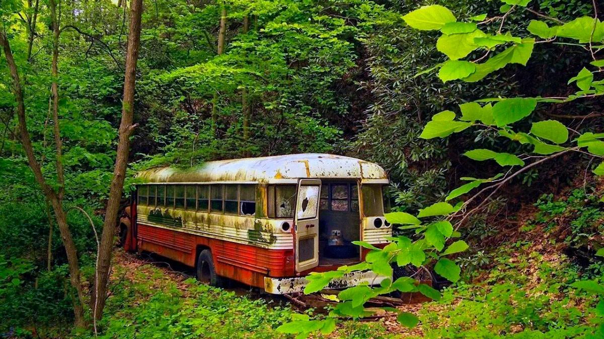 sognare un autobus