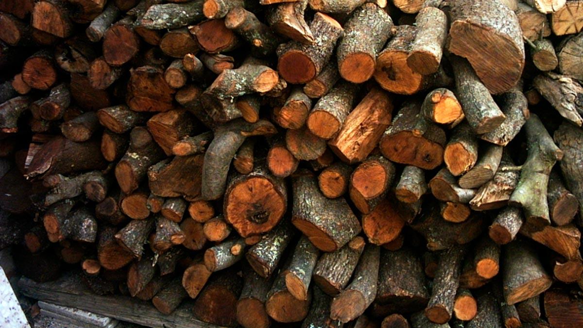 sognare con il legno