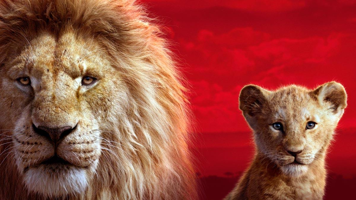 sognare un leone