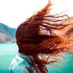 Cosa significa sognare con il vento